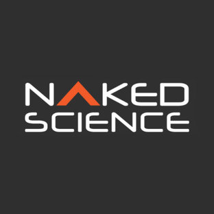 Статистика яндекс дзен Naked Science