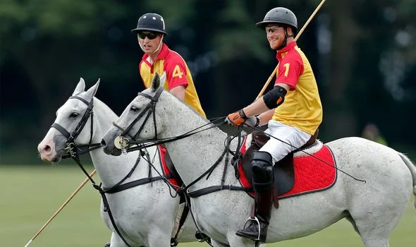Prince Harry and Prince William will attend a charity polo match together next week (Image: GETTY)