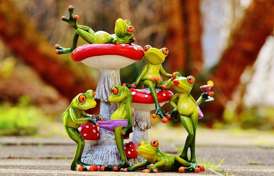 https://pixabay.com/photos/frogs-mushrooms-figures-group-1176218/