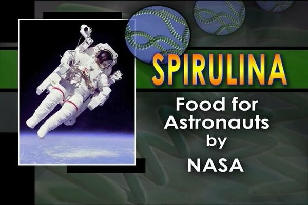Pictures of Spirulina space