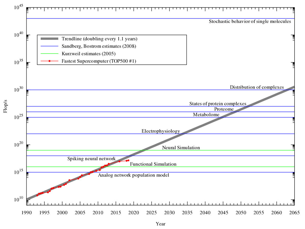 Estimation of the computing power needed to model the human brain. The red line shows where we are now. Credit: Wikipedia