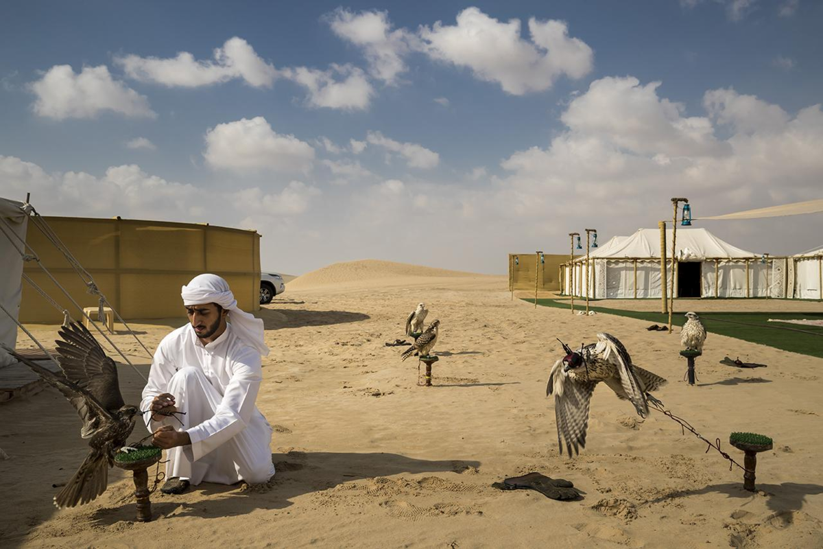 Фото: Brent Stirton, Getty Images for National Geographic