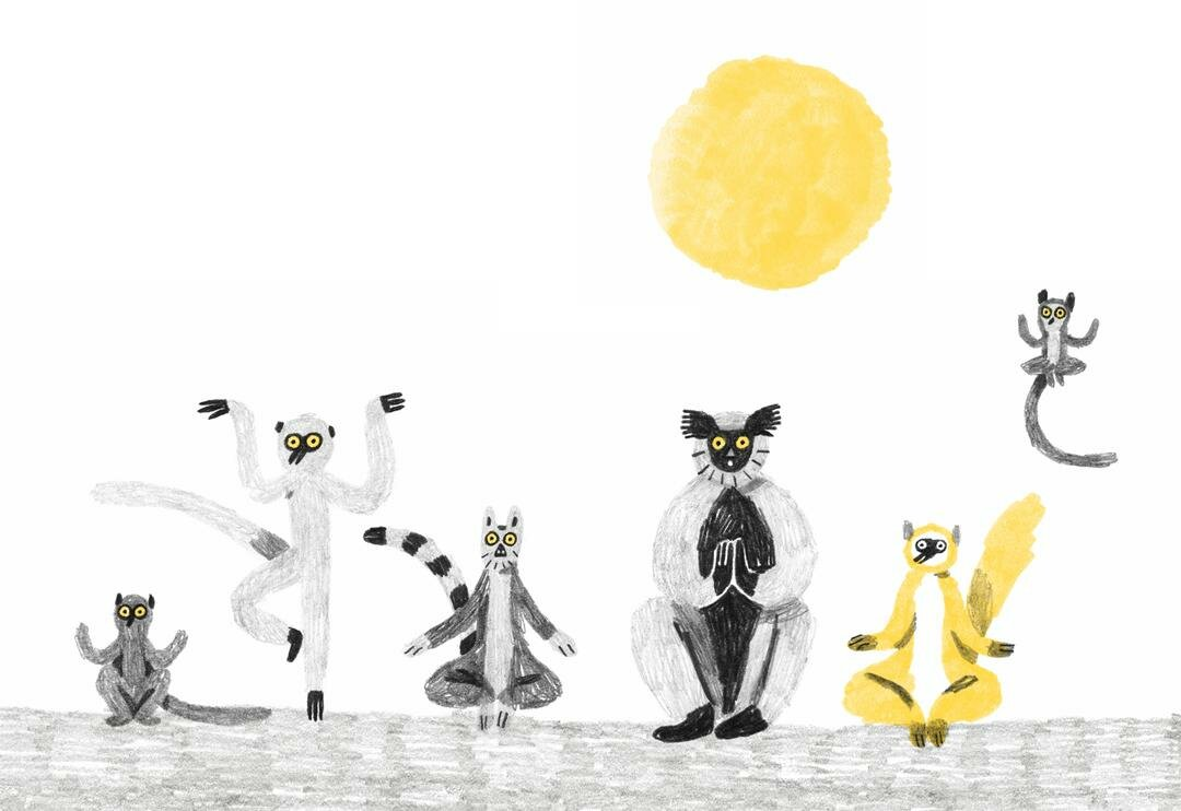 "Andrea Antinori ""Sulla vita dei lemuri / On the lives of lemurs"""