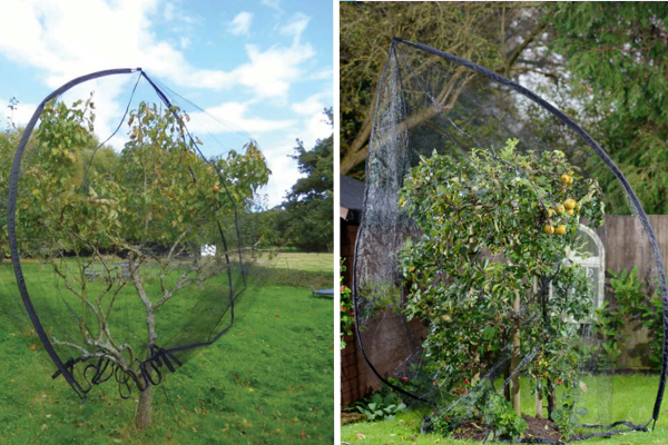 Фото: https://www.harrodhorticultural.com/uploads/images/products/GNE-561_Popadome_Fruit_Tree_Cover_1.jpg