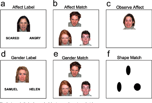 Источник: Putting Feelings Into Words Affect Labeling Disrupts Amygdala Activity in Response to Affective Stimuli
