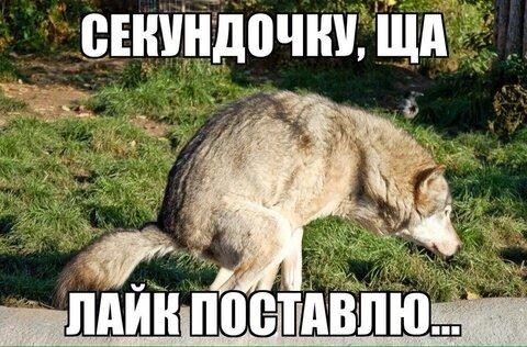 image (29).jpg