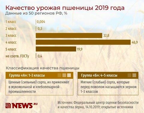 качество урожая пшеницы.jpg