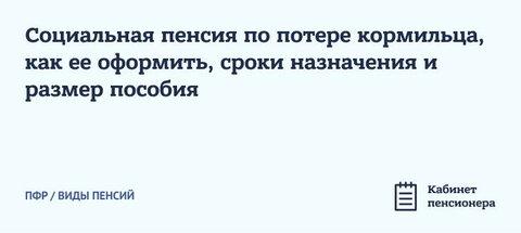 Sotsialnaya-pensiya-po-potere-kormiltsa (1).jpg