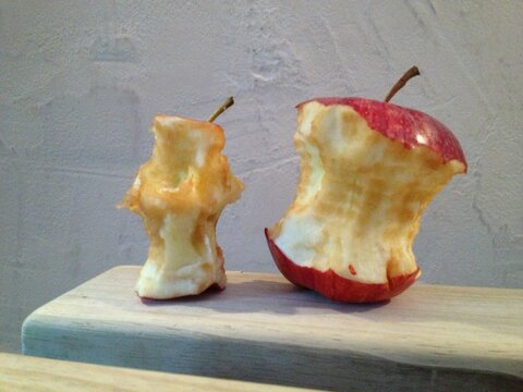 hand-apple-food-produce-iphone-6-art-carving-eaten-organic-waste-chewed-on-apple-core-1350881.jpg