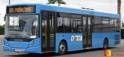 101 bus.jpg