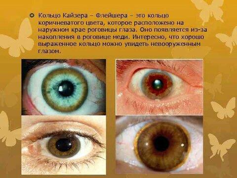 image-11.jpg