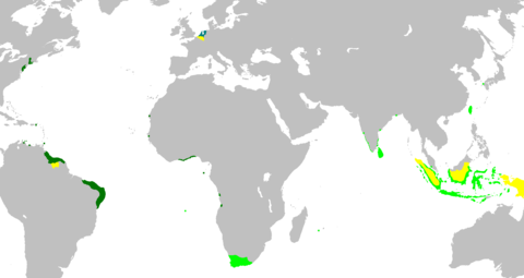Dutch_Empire35.png