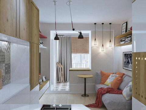 https://design-homes.ru/images/galery/1131/interer-studii-18-kv-m1.jpg