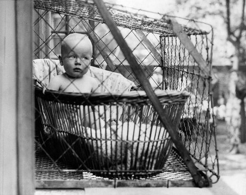http-a.amz_.mshcdn.com-wp-content-uploads-2015-09-babycages-3.jpg