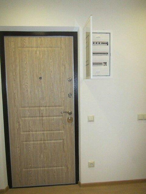 Дверь Торекс.jpg