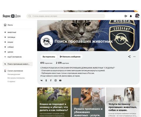 Screenshot_2020-11-05 Поиск пропавших животных Яндекс Дзен.png