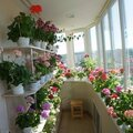 Объединение и совмещение лоджии и балкона с комнатой