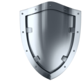 Фаворит-секьюрити, Услуги охраны людей и объектов в Ужуре