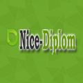 Nice-Diplom, Теория игр в Альметьевском районе