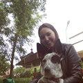 Оксана Зотина, Передержка собак в Лесном городке