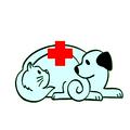 Круглосуточная ветеринарная клиника Ростов-на-Дону, Перевозка животных в Пролетарском районе