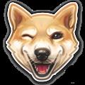 Онлайн-школа дрессировки собак ExtraDog, Мастер-классы в Покровское-Стрешнево