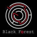 """""""Black Forest"""" , Услуги охраны и детективов в Республике Карелия"""