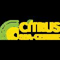 Citrus, Стоунтерапия в Городском округе Истра