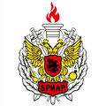 Бриар, Услуги охраны людей и объектов в Сосновском сельском поселении