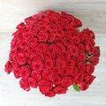 101 роза 50 см с доставкой