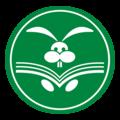 Белый Кролик, Курсы и мастер-классы в Городском округе Шатура
