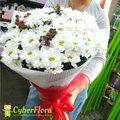 Доставка цветов Новокузнецк