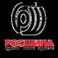 ТД Росшина - грузовые шины, спец и сельхозшины, Услуги шиномонтажа в Котельниче