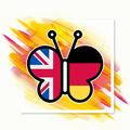 Языковая школа Butterfly, Услуги репетиторов и обучение в Калининграде