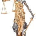 Anna Sergeevna L., Представительство в судах общей юрисдикции в Москве и Московской области
