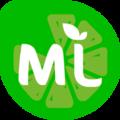 МедиаЛайм, Корпоративный сайт в Могилёвской области