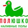 """ООО """"Полюшко"""", Устройство наливных полов в Мытищах"""