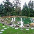 Строительство декоративных прудов и водоемов