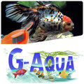 Aquarium-Style, Перевозка животных в Москве и Московской области