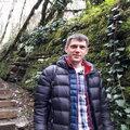 Андрей Лаврентьев, Корчевание дерева в Краснознаменске