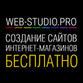 WEB-STUDIO.PRO, Разработка сайтов в Городском округе Владимир