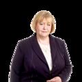 Киселева Елена Ивановна, Услуги налоговых консультантов в Звёздном