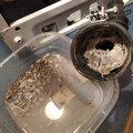 Устранение засора стиральной машины