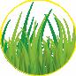 Искусственный газон.ру, Настил спортивных покрытий в Новосибирской области