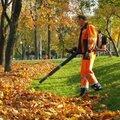 Уборка территории от листьев