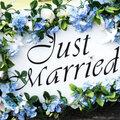Just Married, Организация праздника под ключ в Коврове