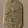 Изготовление адресника для собак