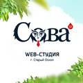Сова31, Регистрация доменов в Белгородской области