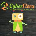 Cyber Flora®, Разное в Гаврилково