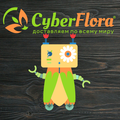 Cyber Flora®, Разное во Фрунзенском районе